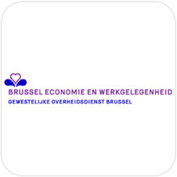 hello languages brussel economie en werkgelegenheid